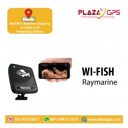 Fishfinder Wifish Raymarine
